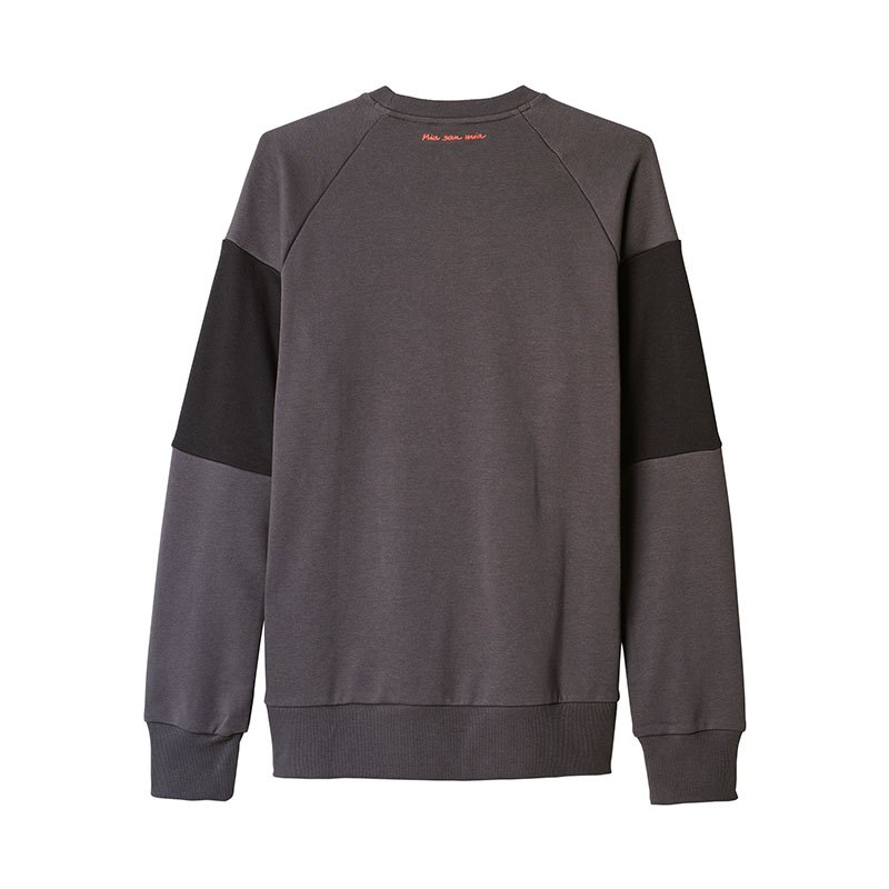adidas fc bayern m nchen sweat top grau sweatshirt. Black Bedroom Furniture Sets. Home Design Ideas