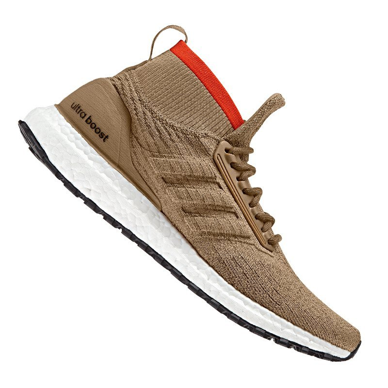 adidas Ultra Boost All Terrain Running Braun