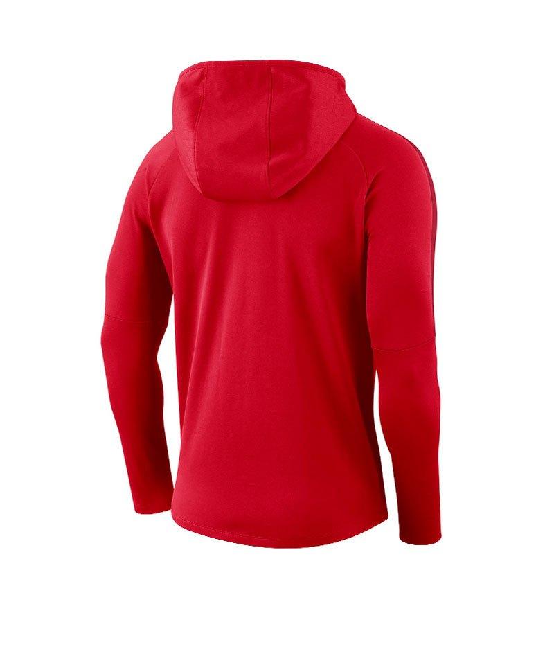 Nike Dry Academy 18 Kapuzensweatshirt Kids F010