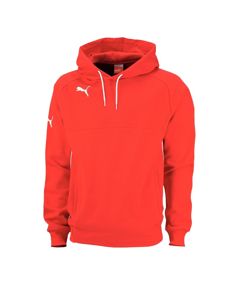 hot sale online 9b267 127af Puma Sweatshirts | Kapuzensweat | Hoodies | Puma Foundation ...