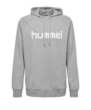 10124747-hummel-cotton-logo-hoody-grau-f2006-203511-fussball-teamsport-textil-sweatshirts.jpg