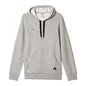 adidas-ace-hoody-kapuzensweatshirt-grau-sportbekleidung-hoodie-pullover-textilien-ap1368.jpg