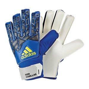 adidas-ace-training-ic-torwarthandschuh-torhueter-torwart-goalkeeper-gloves-herren-erwachsene-blau-weiss-ap7014.jpg