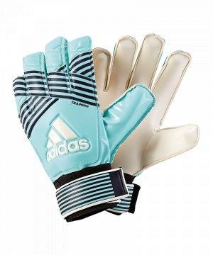 adidas-ace-training-torwarthandschuh-handschuhe-torwart-tor-fussball-ausruestung-equipment-bq4588.jpg