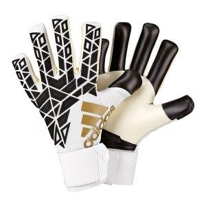 adidas-ace-trans-pro-torwarthandschuh-weiss-goalkeeper-torspieler-handschuh-equipment-fanggeraet-ap6995.jpg