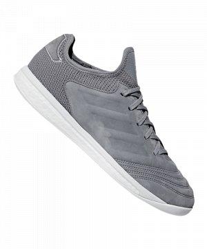 adidas-copa-18-tr-premium-grau-strassenfussballschuh-halle-shoe-cleets-ac7448.jpg