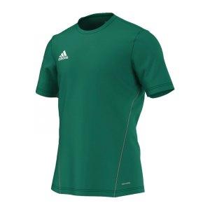 adidas-core-15-trainingsshirt-t-shirt-kurzarmshirt-trainingsjersey-gruen-weiss-men-herren-maenner-s22395.jpg
