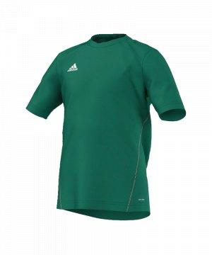 adidas-core-15-trainingsshirt-t-shirt-kurzarmshirt-trainingsjersey-kids-kinder-children-gruen-weiss-s22402.jpg