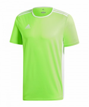 Kurzarm Trikots | Nike Trikot | adidas | Puma | Jako | Erima