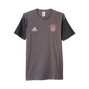 adidas-fc-bayern-muenchen-tee-t-shirt-grau-kurzarm-top-freizeit-fanshirt-fanartikel-fanshop-bundesliga-men-herren-ao0310.jpg