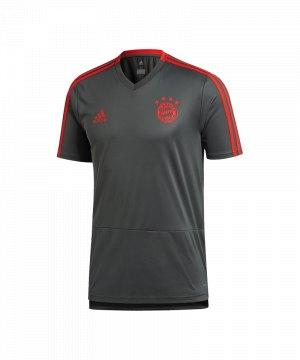 adidas-fc-bayern-muenchen-tee-t-shirt-kids-grau-fanshop-bundesliga-rekordmeister-shortsleeve-kurzarm-cw7262.jpg
