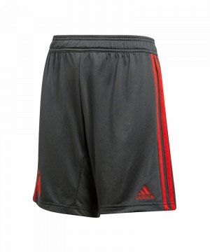 adidas-fc-bayern-muenchen-training-short-kids-grau-fanshop-kurze-hose-bundesliga-rekordmeister-cw7257.jpg