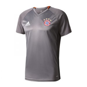 adidas-fc-bayern-muenchen-trainings-shirt-grau-fanshop-fankollektion-training-freizeit-herren-men-ao0308.jpg