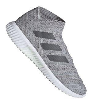 wholesale dealer 6e8f6 76f70 adidas-nemeziz-18-1-tr-grau-weiss-fussballschuhe-