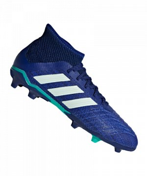 adidas-predator-18-1-fg-j-kids-blau-gruen-fussballschuhe-footballboots-firm-ground-kinder-children-cp8874.jpg