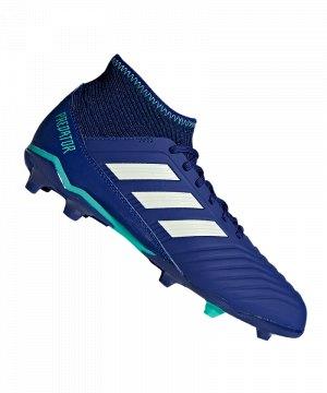 adidas-predator-18-3-fg-j-kids-blau-gruen-fussballschuhe-footballboots-naturrasen-firm-ground-nocken-soccer-cp9012.jpg