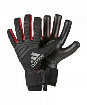 adidas-predator-pro-tw-handschuh-schwarz-equipment-torwarthandschuhe-goalkeeper-dn8578.jpg