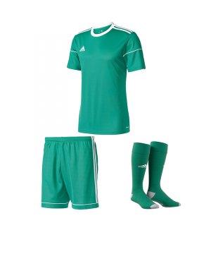 adidas-squadra-17-trikotset-gruen-equipment-mannschaftsausstattung-fussball-jersey-ausruestung-spieltag-bj9179trikotset.jpg
