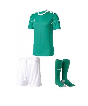 adidas-squadra-17-trikotset-gruen-weiss-equipment-mannschaftsausstattung-fussball-jersey-ausruestung-spieltag-bj9179trikotset.jpg