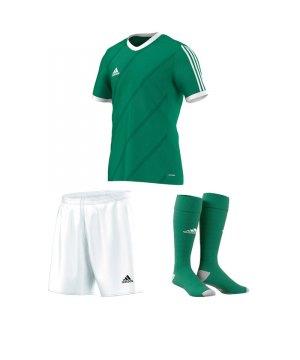 adidas-tabela-14-trikotset-gruen-weiss-football-fussball-teamsport-football-soccer-verein-g70676.jpg