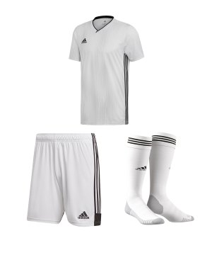 Adidas Kleidung online kaufen | adidas Campeon 15 Short