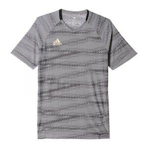 adidas-ufb-climacool-trainingsshirt-grau-t-shirt-tee-kurzarm-top-sportbekleidung-textilien-men-herren-az6134.jpg