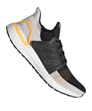 adidas-ultra-boost-19-running-braun-rot-running-schuhe-neutral-g27514.jpg