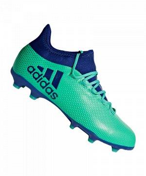 adidas-x-17-1-j-kids-fg-gruen-blau-fussball-sport-match-training-geschwindigkeit-komfort-neuheit-cp8980.jpg