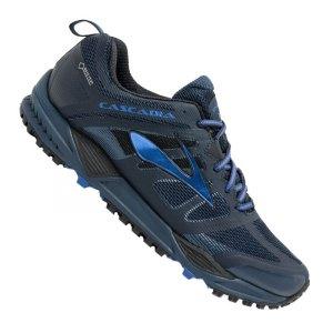brooks-cascadia-11-gtx-running-blau-f409-trail-laufschuh-joggingshoe-wald-wiese-pfade-men-herren-maenner-1102301d.jpg