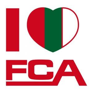 fc-augsburg-wandtattoo-i-love-fca-logo-schriftzug-rot-gruen-gelb-fcawtilfca.jpg