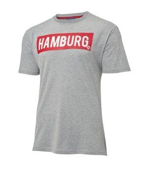 hamburger-sv-sverre-t-shirt-grau-replicas-t-shirts-national-29811.jpg