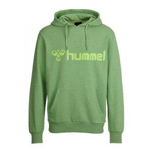 hummel-classic-bee-hoody-sweatshirt-gruen-f6358-kapuzenpullover-freizeit-men-herren-maenner-36-500.jpg