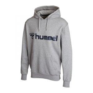 hummel-classic-bee-hoody-sweatshirt-pullover-teamsport-vereinsausstattung-lifestyle-men-herren-maenner-grau-f2006-36-500.jpg