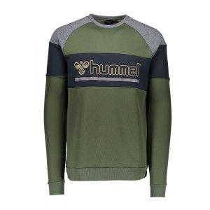 hummel-classic-bee-orion-sweatshirt-gruen-f6173-longsleeve-langarmshirt-pullover-teamsport-033563.jpg