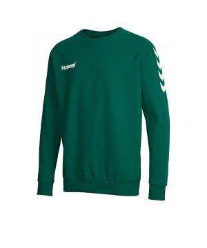 hummel-core-sweatshirt-gruen-f6140-teamsport-vereine-mannschaften-pullover-oberteil-men-herren-36-894.jpg