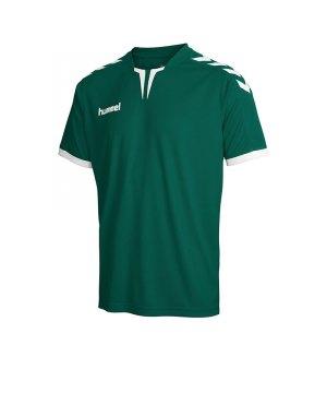 hummel-core-trikot-kurzarm-gruen-f6140-teamsport-vereine-mannschaften-jersey-shortsleeve-men-herren-03-636.jpg