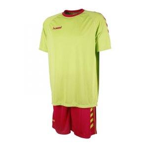 hummel-essential-training-kit-trikotset-trikot-short-teamsportartikel-vereine-men-herren-gruen-pink-f6728-06-095.jpg