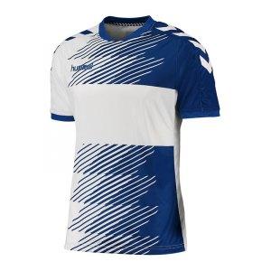 hummel-liga-trikot-kurzarm-blau-f7691-jersey-shortsleeve-kurzarmtrikot-teamsport-mannschaften-men-herren-03-668.jpg