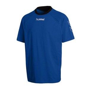hummel-trainingsshirt-tee-roots-blau-f7045-08-913.jpg