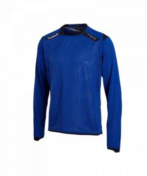 hummel-trikot-ls-technical-x-f7045-blau-04-128.jpg