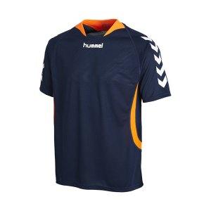 hummel-trikot-team-player-f7642-blau-03-552.jpg