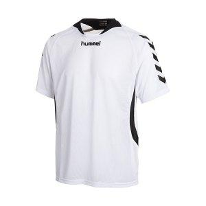 hummel-trikot-team-player-f9001-weiss-03-552.jpg