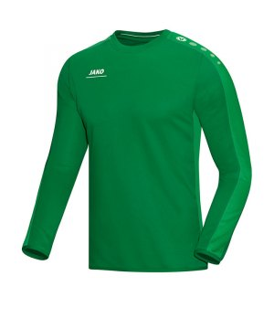 jako-striker-sweatshirt-herren-teamsport-ausruestung-mannschaft-f06-gruen-8816.jpg