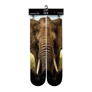 luf-sox-classic-elephant-socken-lifestyle-streetwear-coole-looks-trends-aussergewoehnliche-design-braun-ls-05-1001-lion.jpg