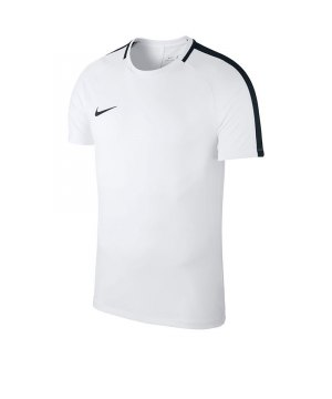 nike-academy-18-football-top-t-shirt-kids-f100-shirt-oberteil-trainingsshirt-fussball-mannschaftssport-ballsportart-893750.jpg