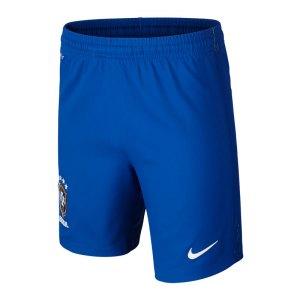 nike-brasilien-short-home-kids-blau-f493-fanshop-replica-heimspiel-copa-america-hose-kurz-kinder-724681.jpg