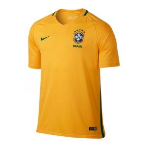 nike-brasilien-trikot-home-gelb-f703-fanshop-heimspiel-copa-america-jersey-kurzarm-men-herren-724597.jpg