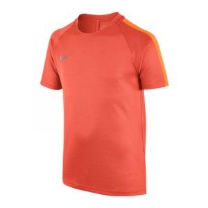 nike-dry-football-top-squad-kurzarmshirt-kids-f842-shortsleeve-trainingsshirt-sportbekleidung-kinder-children-807269.jpg