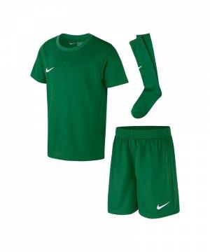 nike-dry-park-kit-trikotset-kids-gruen-f302-kinder-set-ausruestung-mannschaftssport-ballsportart-ah5487.jpg