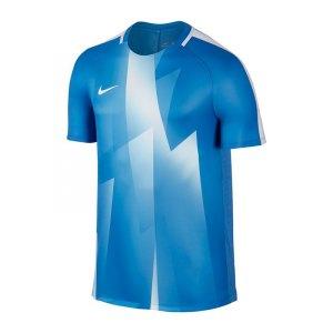 nike-dry-squad-football-top-t-shirt-blau-f435-sportshirt-training-mannschaft-laufen-warm-trocken-reibung-schweissabtrag-chemiefaser-850529.jpg